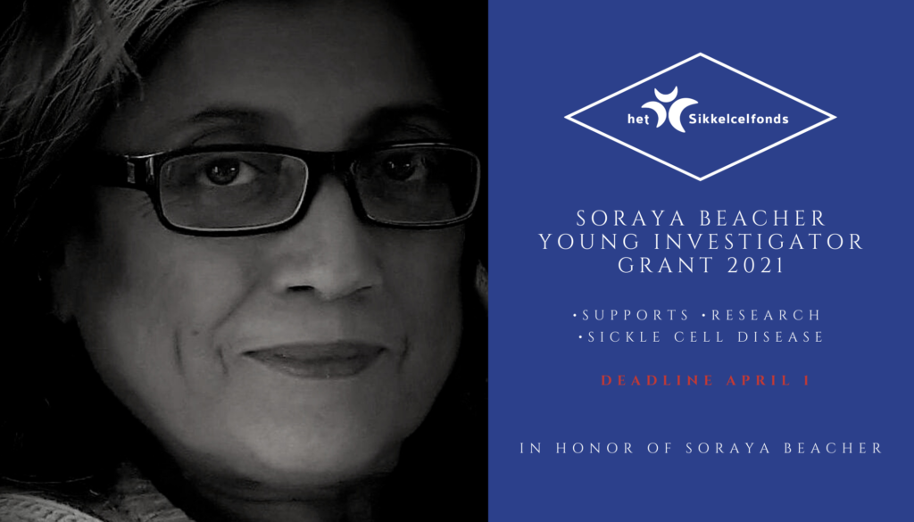 Soraya Beacher Young Investigator Grant